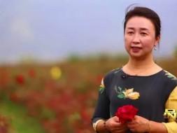 《品质》预告 玫瑰庄园里的浪漫事业